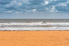 墨尔本,澳大利亚-奥尔顿海滩的冲浪者 库存照片