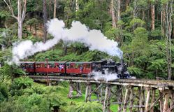 墨尔本,澳大利亚- 2015年8月24日 免版税库存照片