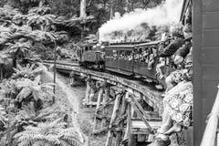 墨尔本,澳大利亚 有乘客的喘气的比利蒸汽火车 在Dandenong范围的历史狭窄的铁路在墨尔本附近 图库摄影
