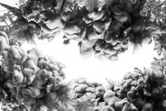 墨水在被隔绝的水黑白色绿色烟丙烯酸酯艺术五颜六色的摘要背景中 库存图片