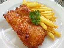 墨西哥人被烘烤的鸡和炸薯条II 图库摄影