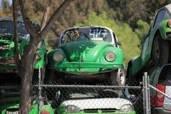 墨西哥出租汽车在废品旧货栈 库存照片