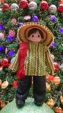 墨西哥国民custome 库存照片