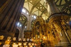 墨西哥城大教堂内部 免版税图库摄影