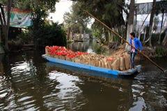 墨西哥城,墨西哥- 2015年11月24日:交付袋子新鲜的一品红- Xmas/圣诞节花的运河船的男孩在Xochimil 库存图片