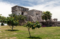 墨西哥寺庙tulum尤加坦 库存图片