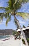 墨西哥度假村海滩 免版税库存照片
