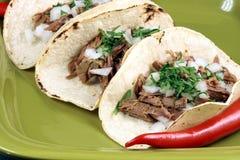 墨西哥样式taquitos 免版税库存图片