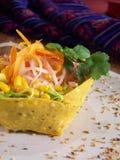 墨西哥沙拉蔬菜 库存图片