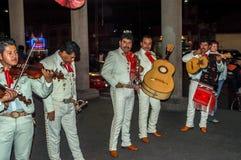 墨西哥流浪乐队街道音乐家 图库摄影
