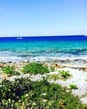 墨西哥海洋 库存照片