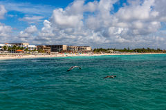 墨西哥海滩胜地 免版税库存照片