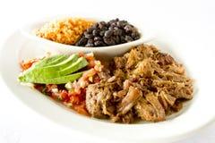 墨西哥猪肉盘 免版税库存照片