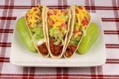 墨西哥理想的炸玉米饼 免版税库存照片