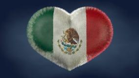 墨西哥的旗子的心脏 免版税图库摄影