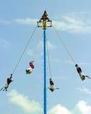 墨西哥的空中飞人 免版税图库摄影