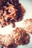 墨西哥豆和土豆薄烤饼 免版税图库摄影