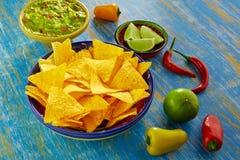 墨西哥食物烤干酪辣味玉米片用鳄梨调味酱捣碎的鳄梨酱辣椒 免版税库存图片