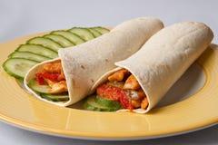 墨西哥鸡玉米粉薄烙饼 库存照片