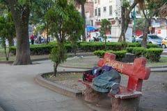 墨西哥- 2017年10月19日:墨西哥与地方公园的早晨都市风景有睡觉的人民的 免版税库存照片