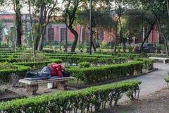 墨西哥- 2017年10月19日:墨西哥与地方公园的早晨都市风景有睡觉的人民的 图库摄影