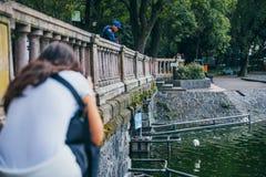 墨西哥- 9月19 :游人和公园在查普特佩克森林守卫观看海鸥 免版税图库摄影