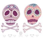 墨西哥头骨集合。有花的五颜六色的头骨和 免版税库存照片