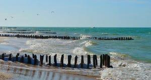 墨西哥chelem的海滩和海洋全景 免版税库存图片