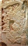 墨西哥palenque废墟 免版税库存图片