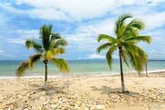 墨西哥Puerto Vallarta 免版税库存图片