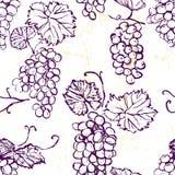 墨水手拉的无缝的样式用葡萄 库存照片