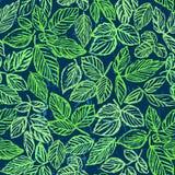 墨水手拉的绿色叶子无缝的样式 库存图片