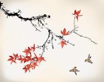 墨水样式槭树叶子 免版税库存照片