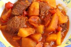 墩牛肉(牛肉、土豆、辣椒粉和菜)匈牙利盘 免版税库存图片
