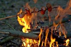 壁炉和香肠 库存图片