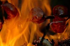 壁炉和香肠 免版税库存图片