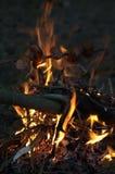 壁炉和香肠 库存照片