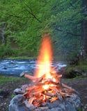 壁炉森林 免版税库存照片