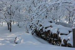 壁炉的日志在雪的篱芭 免版税库存图片