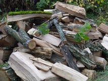 壁炉的木头 图库摄影