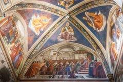 壁画在圣诞老人Trinita, Fl大教堂的Sassetti教堂里  免版税库存照片