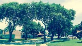 壁角房子在相当有高大的树木机盖和路边路的邻里 库存图片