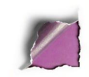 壁角白色被撕毁的纸有紫色背景 免版税库存照片