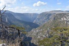 壮观的塔拉峡谷,最深的欧洲峡谷, Tmorska Glavica监视, 库存照片