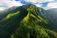 壮观的密林惊人的鸟瞰图,考艾岛 免版税库存图片