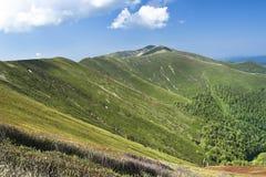壮观的山脉视图在夏天天空下 库存照片