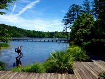 壮观的湖视图 免版税库存照片
