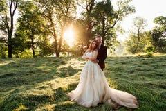 壮观的礼服的新娘在groom& x27站立; 在草的s拥抱 免版税库存图片