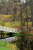 壮观的秋天 库存图片