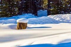 壮观的随风飘飞的雪 库存照片